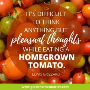 It's-difficult-to-think-anything-but-pleasant-thoughts-while-eating-a-homegrown-tomato-Lewis-Grizzard