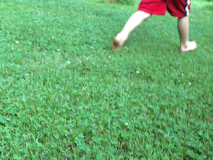 Barefoot-run-Landers-15273-640p