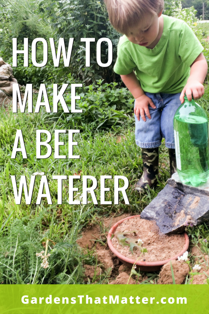 Read more about how to make a simple mosquito-free water source for wildlife.