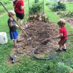 Four Ways a Fall Garden Can Give You a Fresh Start