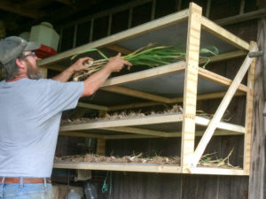 Colby built a 4-tiered drying rack for our garlic and onions.