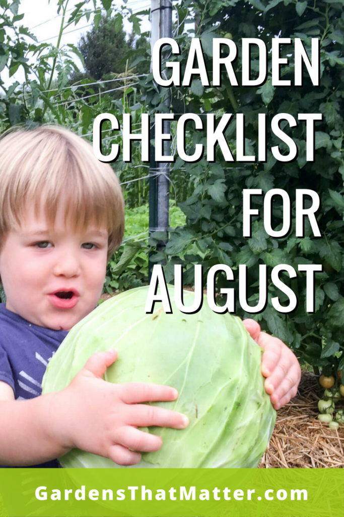 Read more about what to do in your garden in late summer