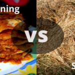 Sheet Mulching vs Lasanga Gardening