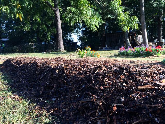 Sheet Mulching Tutorial How To Start A Garden Without