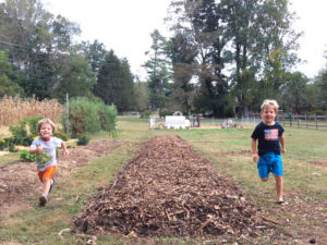 Sheet Mulching Tutorial - Boys running up new garden bed