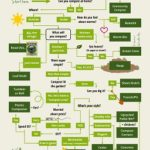 Infographic: Choosing the Best Compost Method