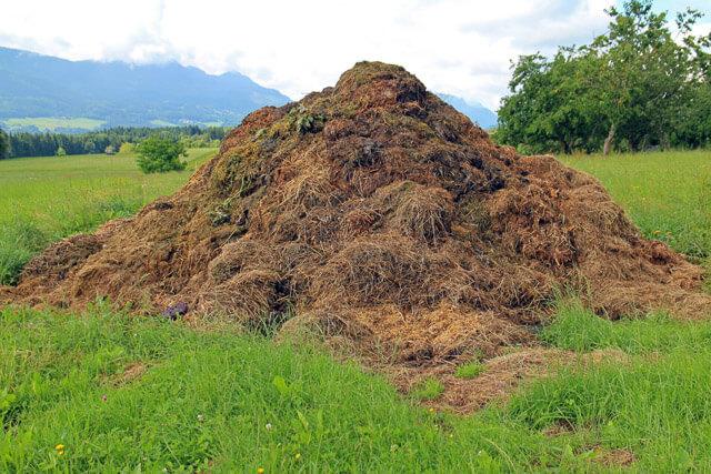best-compost-method-406217