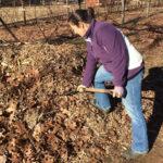 12 Gift Ideas for Gardeners