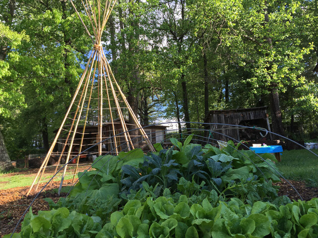 This Was A Big Project (and A Big Tipi!), So We Spread It Out Over A Few  Days. You Can Watch The Process In Our Video Tutorial. Iu0027ll Include  Additional ...