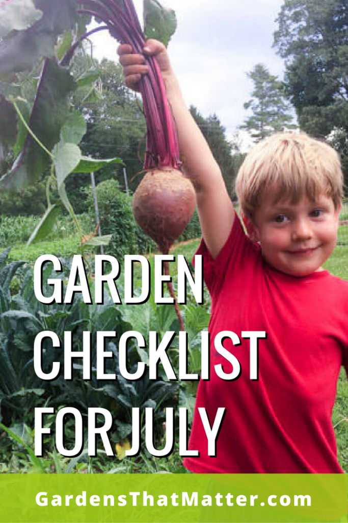 Read more about what to do in your garden during mid-summer