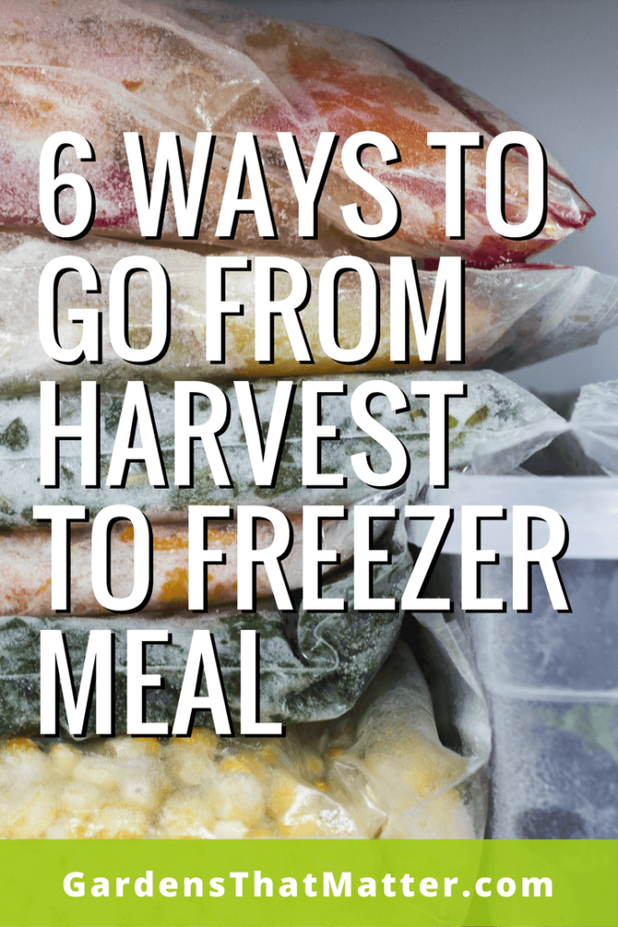 Six freezer meal ideas for taking your harvest from the field to the freezer to the plate